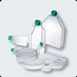 NestCulture_Product_Image