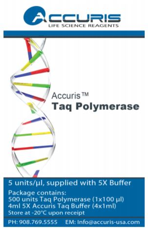 TaqPolymerase