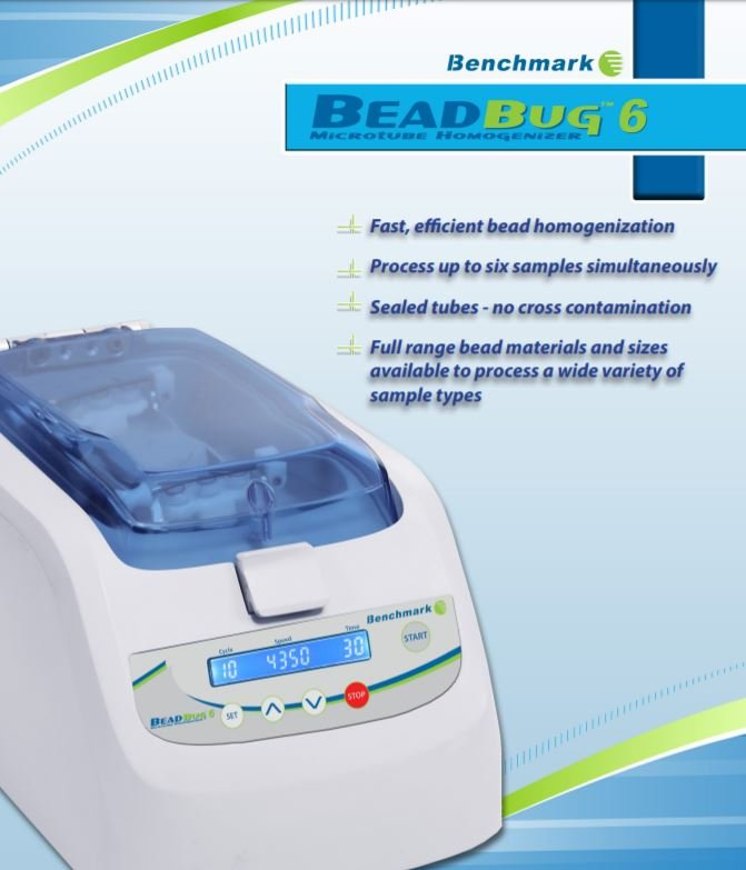 Benchmark Beadbug 6 Microtube Homogenizer